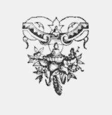 imprint - Analyses descriptive du RUBUS 1891